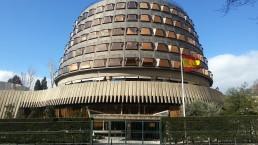 Test Tribunal Constitucional