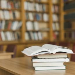 Auxiliar de Biblioteca UVA 2020
